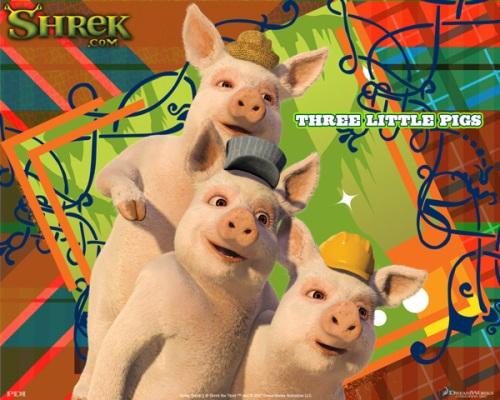 Chr_pigs_p3_600